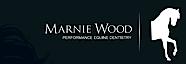 Marnie Wood Performance Equine Dentistry's Company logo