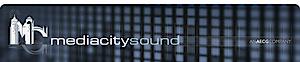 Mc Sound's Company logo