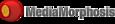 IW Group, Inc.'s Competitor - MediaMorphosis logo
