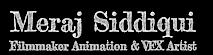 Meraj Siddiqui's Company logo