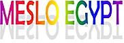 Meslo Egypt  For Scientific Equipment's Company logo