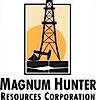 Blue Ridge Mountain Resources's Company logo
