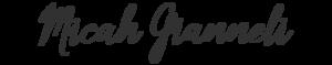 Micah Gianneli's Company logo