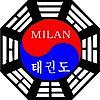 Milan Taekwondo's Company logo