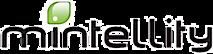 Mintellity's Company logo