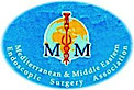 Mmesa - Mediterranean & Middle Eastern Endoscopic Surgery Association's Company logo