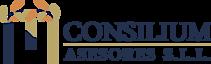 Mn Consilium Sll's Company logo