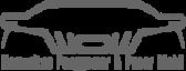 Mobilwow's Company logo