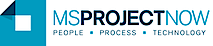 Ms Project Now's Company logo