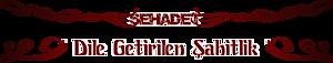 Muratgezenler's Company logo