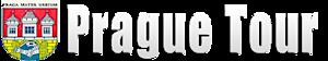 Myfight's Company logo