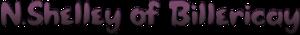 N Shelley's Company logo