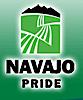NAPI's Company logo