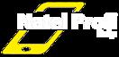 Natel Profi Belp's Company logo