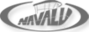 Green-access's Competitor - Navalu logo