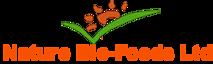 NBFL's Company logo