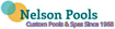 Vividlandscaping's Competitor - Nelsonpools logo