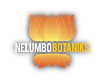 Nelumbo Botaniks's Company logo