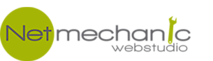 Netmechanic's Company logo