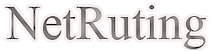 Netruting's Company logo