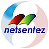 Netsentez's Company logo
