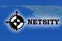 Netsity Systems's Company logo