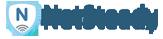 Netsteady's Company logo