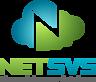 NETSVS's Company logo