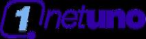 Netuno Telecom International's Company logo