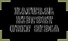 Nhui's Company logo