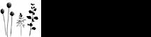 Nicki's Blooms's Company logo