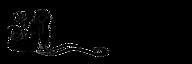 Nirdia Entertainment's Company logo