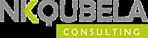 Nkqubela Consulting's Company logo