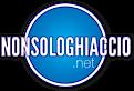 Non Solo Ghiaccio's Company logo