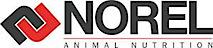 Norel's Company logo