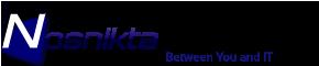 Nosnikta Consulting's Company logo