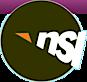 Nsi Intonline's Company logo