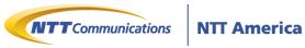 NTT America's Company logo