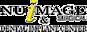 Mitchelldentalpractice's Competitor - Ncimplant logo