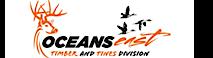 Timberandtines's Company logo