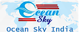 Ocean Sky Security & Placement India Pvt. Ltd's Company logo