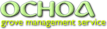 Ochoa Management's Company logo