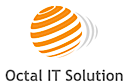 Octal IT Solution's Company logo