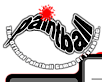 Official Paintball Games Of Texas Inc, The's Company logo