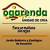 Ogarenda's Company logo
