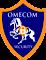 Altaware's Competitor - Omecom Security logo