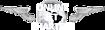 AirFlot's Competitor - Wwwjetcharters logo