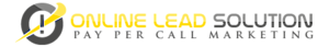Online Lead Solution's Company logo