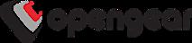 Opengear's Company logo