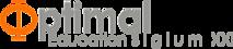 Optimal Education & Technology's Company logo